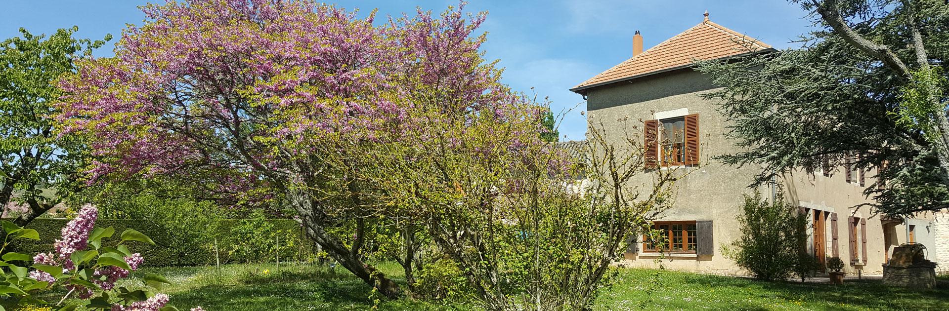 jardin-chambre-hotes-tournus